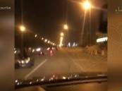 بالفيديو.. مجموعات من الدراجات النارية تُثير الفوضى على طرق الأحساء !!