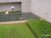 بالفيديو … كريستيانو رونالدو يستخدم الكرة لإسقاط طائرة