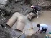 اكتشاف أثري جديد في مصر.. شاهد لحظة استخراج تمثالين أثريين