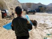 """مشروع قرار """"أميركي – بريطاني – فرنسي"""" لإدانة الهجوم الكيميائي في إدلب"""