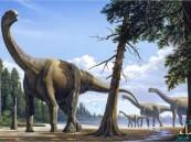بالصور.. العثور على عظام ديناصور عاش في إسبانيا قبل 125 مليون عام