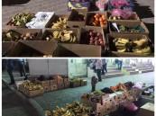 بالصور… في حملة موسعة: بلدية الهفوف تضبط 11 طن و تزيل 30 مبسط جائل