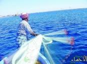 تحديد موسم صيد الربيان على ساحل الخليج العربي