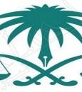6 أشهر سجنا و100 ألف غرامة عقوبة مهرِّب المفرقعات (إنفوجرافيك)