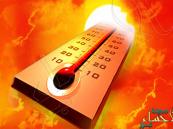 """""""العمري"""": السعودية تشهد درجات حرارة """"قاتلة"""" هذه الأيام"""