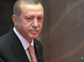 الرئاسة التركية: أردوغان يخطّط لزيارة السعودية وقطر خلال الشهر الجاري