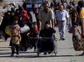 أيزيدية تتعرف على داعشي تاجر بها متخفيًا وسط نازحي تلعفر