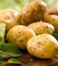 """بالفيديو.. أخصائي يكشف مفاجأة عن """"البطاطس"""": تقشيرها جريمة !!"""