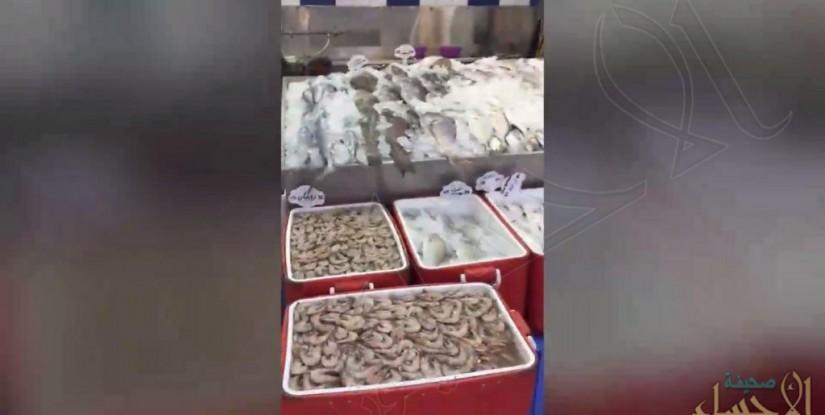 بالفيديو… احذر في #الأحساء .. هكذا تباع الاسماك المغشوشة..!!