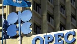 """""""أوبك"""": الطلب على النفط سيتجاوز 100 مليون برميل يومياً في 2020"""