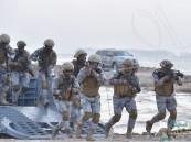 بالصور .. 5 فرضيات تُجسّد نظام المفهوم العملياتي البري والبحري الجديد لقوات #حرس_الحدود