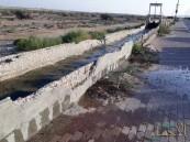 بالصور .. هكذا تطفح مياه الري #في العيون ومطالبات بسرعة التدخل