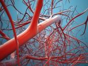 علماء يبتكرون طريقة جديدة لترميم الأوعية الدموية