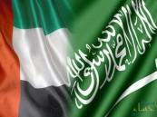 """الإمارات تعلن عن شراكة خاصة مع السعودية بعيدا عن """"مجلس التعاون"""""""