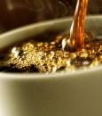 لهذه الأسباب .. عليك أن تشرب القهوة يومياً !