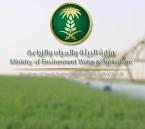 """طرح 15 عقداً لمشاريع """"مياه الشرب"""" في المنطقة الشرقية بأكثر 4.5 مليارات ريال"""