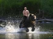 """بوتين يعلق على """"صورة له وهو يمتطي دبا"""" !!"""