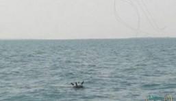 """لغم حوثي بالبحر الأحمر يقتل ويجرح 14 صيادًا بـ""""التحيتا"""" غرب اليمن"""