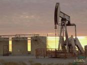 أسعار النفط.. استقرار خام القياس العالمي عند 76.21 دولار للبرميل
