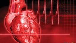 دراسة تكشف العلاقة بين زيادة الوزن وتأثر وظائف القلب لدى الشباب