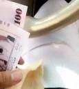 """شاهد.. مقطع لمواطن يُطعم ناقته الأموال يُثير الاستياء .. و""""المالكي"""" يعلّق"""