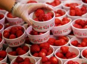 """أغذية المبيدات الحشرية .. وهذه الفاكهة تتصدر """"القائمة المرعبة"""" !!"""