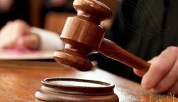 محكمة اسكتلندية تُعاقب سيدة جوَّعت 3 قطط وبطتين !!