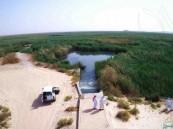 """بالصور…  """"بحيرة الأصفر"""" بالأحساء .. كحل الصيف وبياض الشتاء"""