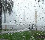توقعات الأرصاد لطقس الأحد: أمطار رعدية ورياح نشطة على الشرقية