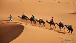 المملكة ترفض المساس بالمصالح العليا للمغرب الشقيق أو التعدي على سيادته