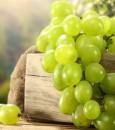 10 أطعمة طبيعية تقضي على مشكلة إدمان السكر وأضراره الخطيرة