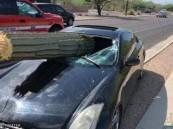 """شجرة صبار تخترق سيارة مسرعة.. و""""المعجزة تتحقق"""" !!"""