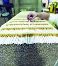 المملكة تُسجل 44% انخفاضًا في واردات التبغ هذا العام