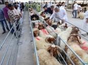 قانون ذبح الأضاحي في الكويت يُثير جدلًا واسعًا !!