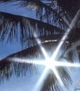 """""""هندي"""": الصيف انتهى فلكيًا.. والشمس تتعامد فوق خط الاستواء الاثنين"""