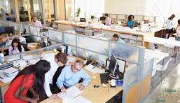 دراسة: المكاتب المفتوحة ترفع من إنتاجية العمل