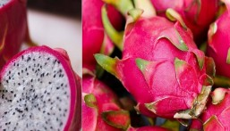 """فوائد """"مذهلة"""" قد لا يعرفها الكثيرون عن """"فاكهة التنين"""" !!"""