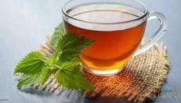إليك 5 خرافات شائعة عن الشاي.. لا تصدقها