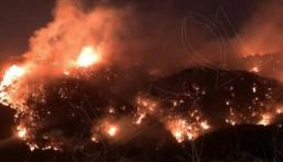 شاهد .. حرائق ضخمة تثير الرعب في لبنان وتتسبب في حالات نزوح جماعية