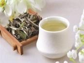 ما هو الشاي الأبيض؟
