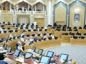 """""""الشورى"""" يطالب بالسماح لأساتذة الجامعات بممارسة الأعمال الحرة"""