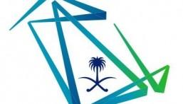 وزارة الاتصالات توفر 8000 فرصة تدريبية للجنسين للتدريب عن بعد