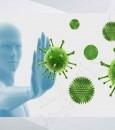 """لحماية الجسم من الأمراض.. 5 خطوات يُنصح باتباعها للحصول على """"مناعة قوية"""""""