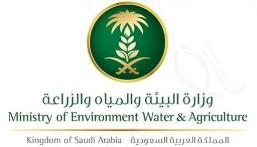 في الأحساء.. مكتب البيئة والمياه والزراعة يبدأ بإصدار تصاريح التنقل