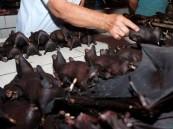 """تحرك رسمي من أمريكا لإغلاق أسواق """"الخفافيش"""" في الصين"""