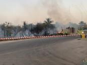 """بالصور … حريق يلتهم مزرعة في """"نايفية الأحساء""""!!"""
