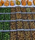 في تقرير مصور … الأحساء واحة غذائية تتلون بالفواكه والخضروات