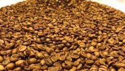 """""""الخضيري"""" يكشف حقيقة مقطع وجوب غسل القهوة بالماء"""