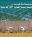 رئيس جامعة الملك فيصل يوجه بإطلاق مشروع حملة لغرس 45 ألف شتلة وشجرة في واحة الأحساء