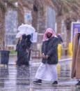 الحصيني: موجتان باردتان على المملكة وانخفاض الحرارة لتحت الصفر.. بدءًا من اليوم